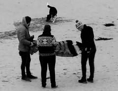 The dog's buried the string (farwest56) Tags: uk england blackandwhite dog kite seaweed men beach mono women cornwall olympus stives ipad pothmeor sz31mr