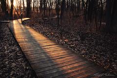 That Kind of Light (anakin1814) Tags: sunset wisconsin lost path wi beams naturepreserve goldenhour 1000islands raysoflight rayoflight godlight kaukauna thousandislandnaturecenter