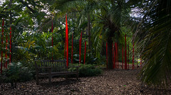 Red reed respite (littletinperson) Tags: red sculpture color green chihuly art glass gardens bench outdoors florida explore impression coralgables d800 fairchildgardens explored redreeds nikond800 littletinperson deexplored reallyismyselfesteemnotlowenoughalready deexplore