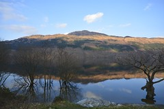 Across the Loch (robpentecost83) Tags: reflection water landscape scotland loch lochlomond landscaps