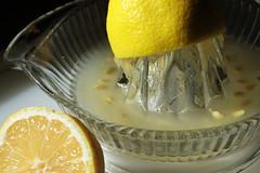 No Seeds Please 03072015 (Orange Barn) Tags: seeds lemons citrus juicer lemonjuice oldfashioned 115picturesin2015