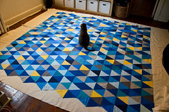 Dizzy Enjoys the Triangle Quilt Sandwich (iriskh) Tags: triangles cat triangle quilt needlework sewing dizzy basting 18200mm isoscelestriangle nikond5100
