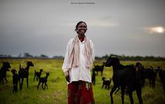 ESSAKI AMMAL :) (sethuudhayaprakash) Tags: she life portrait people india streets love smile photoshop canon 50mm mood colours documentary goat story adobe sheperd lightoom