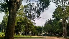 IMG_20160528_145217605_HDR (Lipe_Matheus) Tags: park ibirapuera