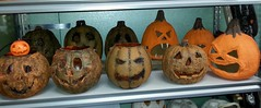 Some of my pumpkins I made or modified (stevensonmetal) Tags: halloween pumpkin diy jackolantern pumpkins craft hobby corpse pail corpsing corpsed stevensonmetal
