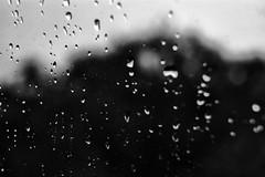 Santiago de Chile (Alejandro Bonilla) Tags: street santiago blackandwhite bw black blancoynegro rain monocromo sam sony streetphotography drop bn santiagodechile santiagocentro monocromatico santiaguinos sonya290