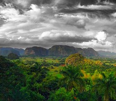 beautiful #landscape #Viales #Vinales #Valley #UNESCO Area and #Tabacco Field #Cohiba #CubaTravel #Cuba #BestInTravel #ig_cuba #kuba #holiday www.CasaVinales.jimdo.com (Casa Particular Vinales) Tags: holiday landscape cuba unesco valley vinales kuba tabacco cohiba viales cubatravel bestintravel igcuba