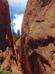 Sneak preview (sharonhorning) Tags: trees red texture rock colorado rocks background gardenofthegods formations