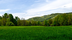 Spring in Vermont - New England - 2016 (gfbritto) Tags: blue mountain green spring vermont nikond5500