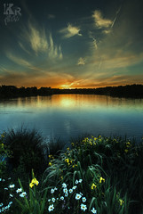Yorkshire Jo (Karl Ruston) Tags: ocean flowers sunset england sky lake green water field clouds reflections river landscape seaside outdoor yorkshire shore serene