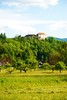 Bled, Upper Carniola, Slovenia (West Tribe) Tags: trees mountain slovenia bled slovene