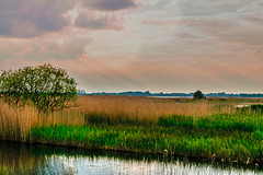 From the Hide (C.G.Photos) Tags: england landscapes naturereserve eastanglia marshes norfolkbroads