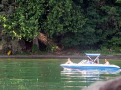 IMG_4219 (Autistic Reality) Tags: usa lake ny newyork nature water america wonder boats boat us tour unitedstates unitedstatesofamerica lakes upstateny cny upstatenewyork centralnewyork newyorkstate tours fingerlakes cayugalake nys nystate southerntier fingerlake tompkinscounty lakecayuga centralny fingerlakesregion stateofnewyork cityofithaca