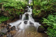 Todtnauer Wasserfall (baertie_66) Tags: todtnau todnauerwasserfall blackforest schwarzwald timeexposure