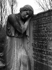 'Memories Of Our Dear Departed'   Your time on earth is over Try to reconcile This spectre we call death For no one can avoid it's stare But hope and human nature Mean we lose but still can care (Miranda Ruiter) Tags: amsterdam graveyard cemetaries