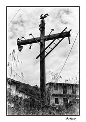 Symbols (Artico7) Tags: wood sky blackandwhite bw italy house monochrome hammer clouds contrast blackwhite fuji village cross tools christian axe rooster ladder symbols biancoenero pliers friuli siloutte polcenigo xe1 mezzomonte