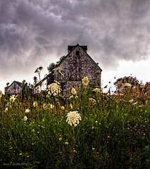 Lace Covered Barn (jackalope22) Tags: cloud storm clouds barn anne lace textures queenes