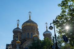 DSC_4620 (Haikeu) Tags: saint russia moscow petersburg in m bo trng trng tu tng qung  kremli ngm ermitak