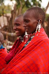 Maasai Women (3scapePhotos) Tags: africa maasai masai tanzania adorned african cloak continent crater culture indigenous jewelry local massai montana native ngorongoro ngorongorocrater people person portrait red safari tribal tribe vertical village woman women
