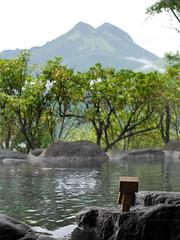 浸溫泉 (Steve only) Tags: hot japan lumix spring g panasonic snaps kyushu 溫泉 yufuin 九州 danbo vario m43 湯布院 1445mm f3556 由布院 14453556 吾亦紅 ダンボー 阿楞 dmcgm1