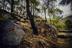 This way (Melissa Maples) Tags: trees man david rock turkey woods nikon asia path painted trkiye boulder arrow nikkor chimera vr afs  chimaira 18200mm  f3556g yanarta  18200mmf3556g iral d5100