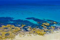 Sellicks beach (Sougata2013) Tags: nature landscape nikon colours australia adelaide southaustralia sellicksbeach aldingabay nikond7200