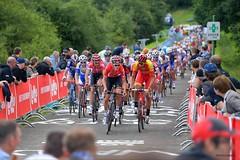 10591427-064 (Lotto Soudal Cycling Team) Tags: sport race de cycling belgium belgique route elite bk uci wielrennen 2016 belgisch championnat lez kampioenschap cyclisme nationaal boussu walcourt wielerwedstrijd leslacsdeleaudheure boussulezwalcourt wegwielrennen wegkampioenschap