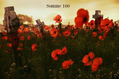 100 years ago. The Somme (pentlandpirate) Tags: greatbritain memorial war respect battle poppies ww1 thesomme learnfromhistory