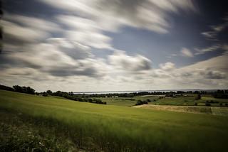 Danish Summer Landscape