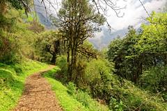 ASJ_ABC_2016004 (Joshi Anand) Tags: nepal camp india nature trek nikon base annapurna himalayas joshi anand 2016 giripremi anandjoshi