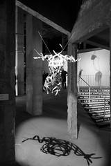 Le Palais des monteurs / Mathieu Rossye / Buste #3 (mahtieuc) Tags: paris france ledefrance fr palaisdetokyo mathieurossye lepalaisdesmonteurs