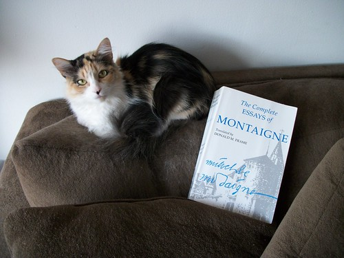 Sassy (my cat) and Montaigne