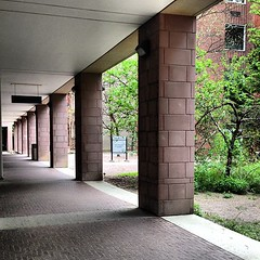 Morning avenue (quistian) Tags: pink square universityoftoronto squareformat pillars bancroft iphoneography instagramapp uploaded:by=instagram