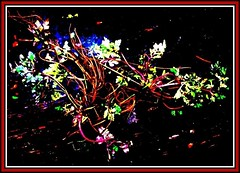 Ausgerissen (Credi) Tags: abstract digiart photoart abstractreality abstractphoto