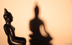 Shadow (_MissMoneyPenny_) Tags: light shadow statue buddha ombra statua luce seppia