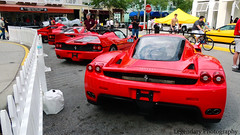 Ferrari Enzo, f50, f40, and 288 gto (Legendary Photography) Tags: london car photography shot florida fast ferrari exotic enzo gto expensive exotics 288 f40 f50
