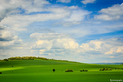 Day On The Green (FL|photography) Tags: green colors landscape deutschland thringen meadow vivid cloudysky arnstadt polariser