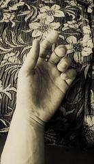 Take my hand and bring me everywhere.... (AlleTa91) Tags: cool uncool uncool2 uncool8 uncool3 uncool4 uncool6 uncool7 uncool9 uncool5fordeemac