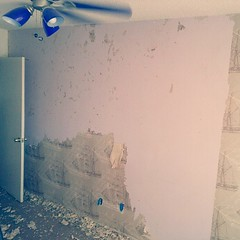 Who the heck invented wallpaper and the adhesive that binds it!? I spent half a day removing wallpaper from my room and it was not fun! #wall #wallpaper (MisledYouth74) Tags: square squareformat normal iphoneography instagramapp uploaded:by=instagram