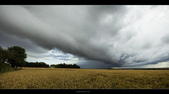 Fusion linaire (Skylights*) Tags: sky storm france nature clouds canon landscape wheat country champs ciel fields normandie nuages paysage campagne calvados meteorology stormchasing bl mtorologie bassenormandie angrysky 550d rollingcloud 1750mm cielorageux stormtracking stormphotography summer2011 t2011 igorhollman traqueurdorage nuageenrouleau
