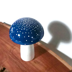Trippy Toadstool - Wooden Mushroom - Blue Stardust (raycious) Tags: wood pink blue red white green mushroom yellow forest woodland garden toy botanical wooden handmade alice magic rustic waldorf adorable australia brisbane fairy earthy fungus kawaii toadstool lime etsy recycle wonderland magical eco homedecor turning polkadot woodcraft reuse reclaim woodturning kinoko woderland