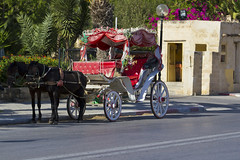 Horsedrawn carriage in Tunisia (Schamane27) Tags: street old city sunset people horse building tower history tourism church monument animal architecture town waiting europe carriage traffic northafrica dusk gothic decoration culture mosque tourist historic transportation moorish vehicle medina historical arabianhorse traditionalculture tunesien urbanscene jemaa traveldestinations djemaa koutoubiamosque northafricanculture djemmaelfnasquare worldculturaleritage enverkehr