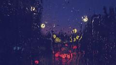 Rainy evening bus ride