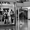 belle of the mall (Laurarama) Tags: blackandwhite baby mall mono candid streetphotography nikond7000 nikkor50mm18g laurarama hmbt odcsenseofscale
