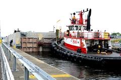 May 15, 2013 - Onward—to the lake (WSDOT) Tags: bridge construction tugboat ballard th kgm ballardlocks floatingbridge sr520 kiewit hirammchittendenlocks wsdot washingtonstatedepartmentoftransportation