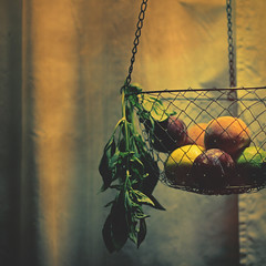 293.365.02 {explore} (Randomographer) Tags: light shadow food kitchen fruit photography juicy yummy lemon healthy basket natural farm curtain peach plum vegetable chain explore delicious basil hanging organic lime veggie edible drapes herb nutritious project365 packedwithvitamins