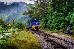 Train on the hike to Machu Picchu