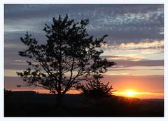 Sunset (Choulabags) Tags: devon choulabags blinkagain bestofblinkwinners blinksuperstars