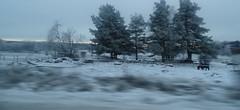 (blazedelacroix) Tags: road horse snow motion blur sweden