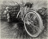 IMG_8967-Edit-2 (grandalloliver) Tags: bicycle canon december wideangle disney disneyworld animalkingdom garyoliver sliderssunday grandalloliver grandalloliverphoto